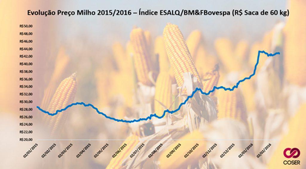 Preço do Milho - Agroceres Multimix - Nutrição Animal
