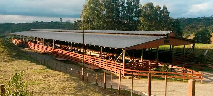 Fazenda Bramap - Nutrição Animal - Agroceres Multimix
