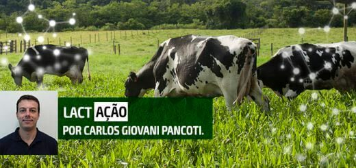 Laminite - Nutrição Animal Agroceres Multimix