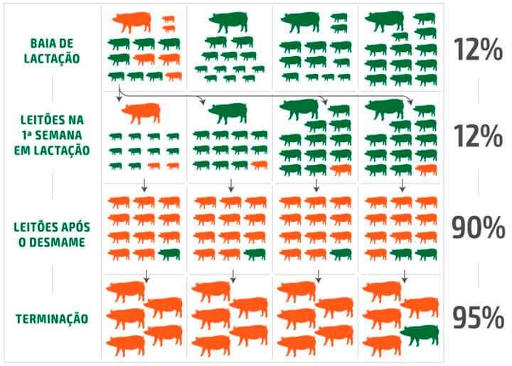 Uso de antibióticos - Agroceres Multimix Nutrição Animal