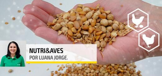 Urease - Agroceres Multimix Nutrição Animal