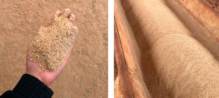 Sorgo - Nutrição Animal Agroceres Multimix