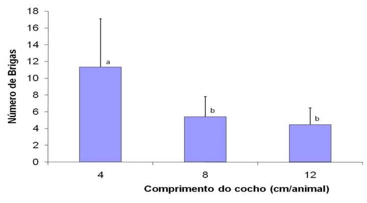 Suplementação no período das águas- A imagem mostra um gráfico que apresenta o número de brigas entre os bois devido ao cumprimento do cocho, sendo que quando o cocho chega em torno de 11cm o número de brigas é 4, quando em torno de 5cm o número é de 8 brigas, quando abaixo de 5cm o número de brigas é de 12 bois.