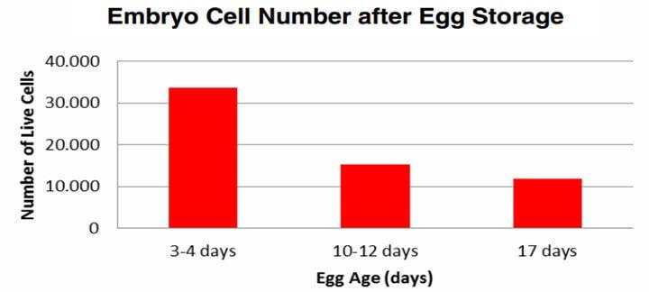 Artigo sobre SPIDES - Gráfico que mostra o número de células vivas e a idade do ovo (em dias)