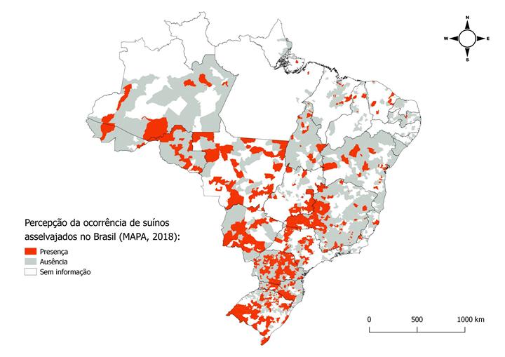Peste Suína Africana: imagem que mostra a percepção da ocorrência de suínos asselvajados no Brasil