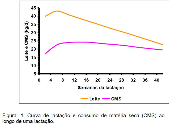agrupamento nutricional: A imagem mostra uma curva de lactação e consumo de matéria seca (CMS) ao longo de uma lactação.