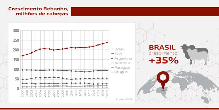 Gráfico sobre crescimento de rebanho no Brasil, EUA, Argentina, Paraguai e Uruguai - artigo sobre carne bovina