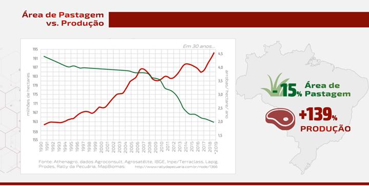 Gráfico sobre a área de pastagem versus a produção - artigo sobre carne bovina