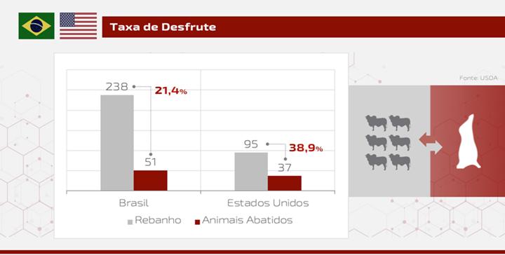 gráfico sobre a taxa de desfrute no Brasil e nos Estados Unidos -artigo sobre carne bovina