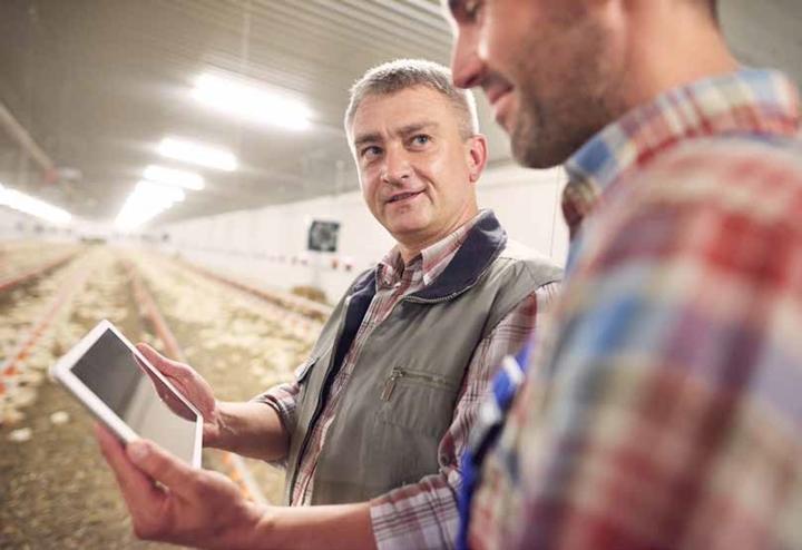 Imagem que remete ao uso da tecnologia dentro da industria avícola - dois homens em expressao de conversa e com um tablet na mão