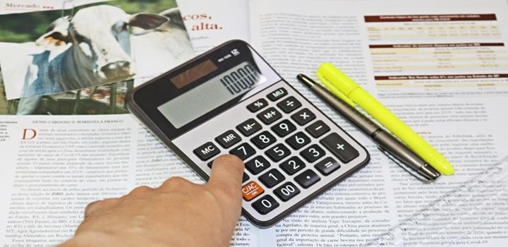 imagem do artigo com tema sobre perfil investidor