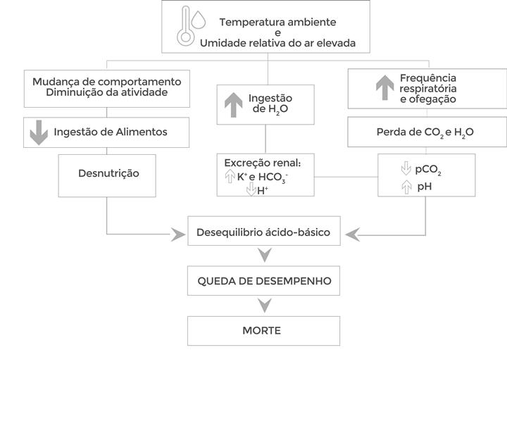 Figura 1: Alterações metabólicas nas aves