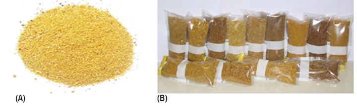 Figura 1. Grãos secos de destilaria com solúveis: (A) característica do produto; (B) variação de cor entre amostras (Silva et al., 2016).