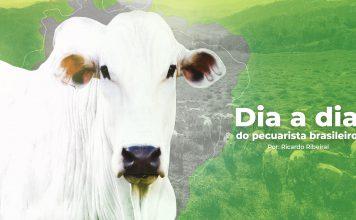 Capa do post sobre o pecuarista brasileiro