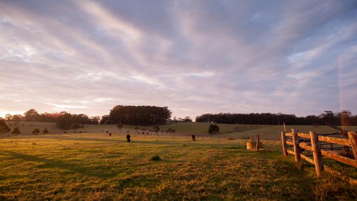 Capa do artigo sobre gestão de propriedade rural