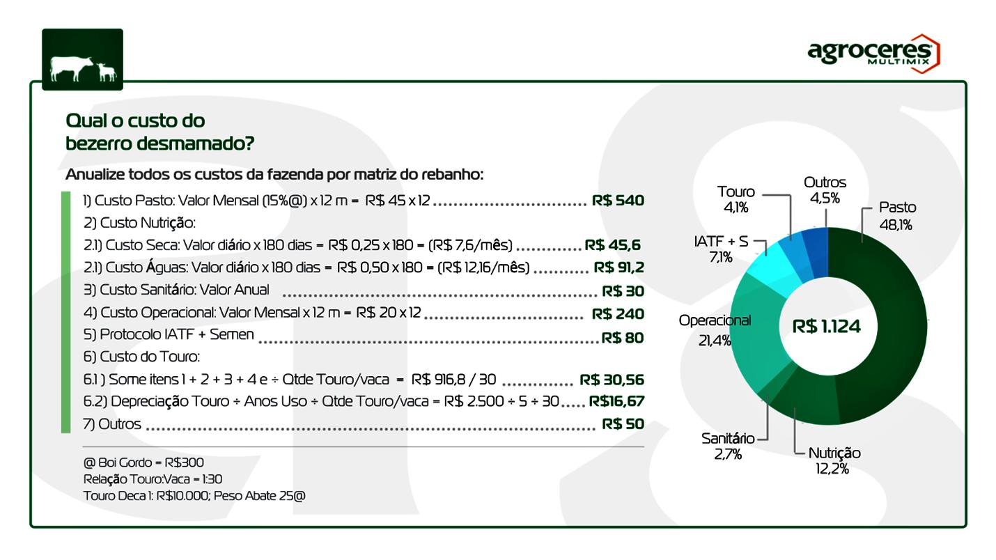 Informações sobre qual o custo do bezerro desmamado?  Pertencente ao artigo com tema sobre bezerra f1