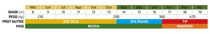 Tabela de simulação de recria em SPE e terminação na TIP