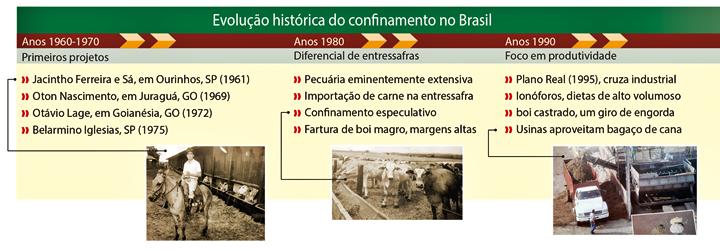 Tabela sobre a evolução histórica do confinamento no Brasil